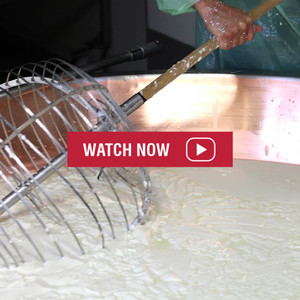 Behind The Scenes Video about Asiago