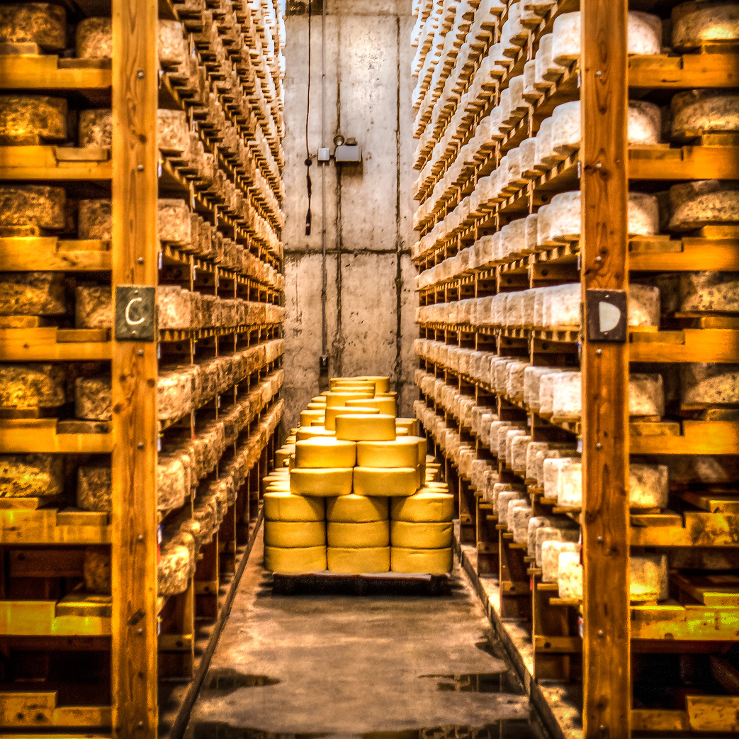 Cheese Aging in the Cellars at Jasper Hill